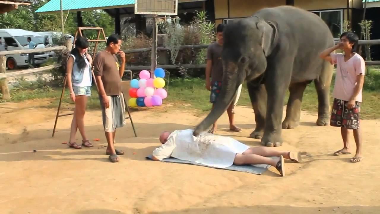 Деревня Слонов массаж