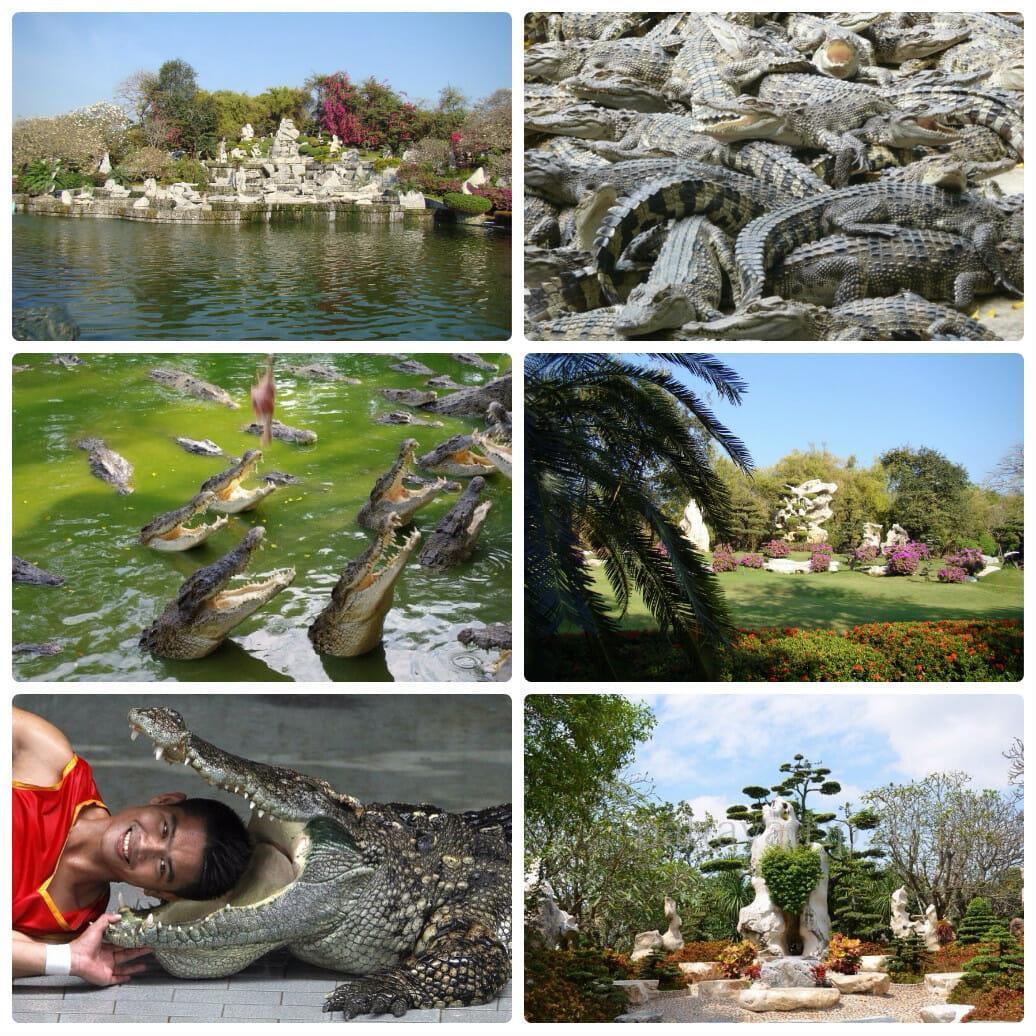 Парк миллионолетних камней и крокодилова ферма