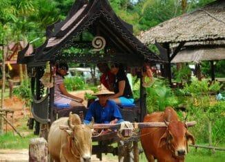 Тайская деревня Пхукета
