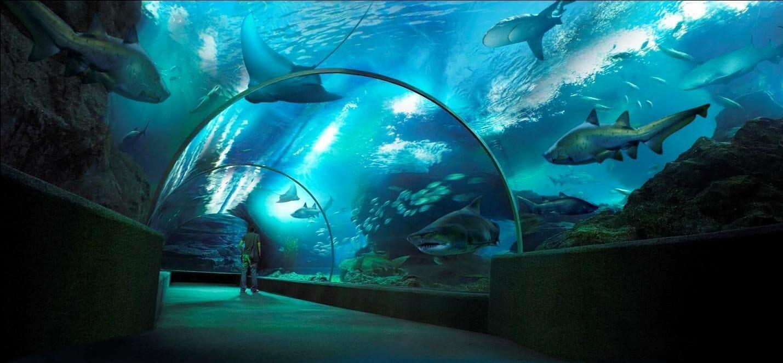 Siam Ocean World тунель