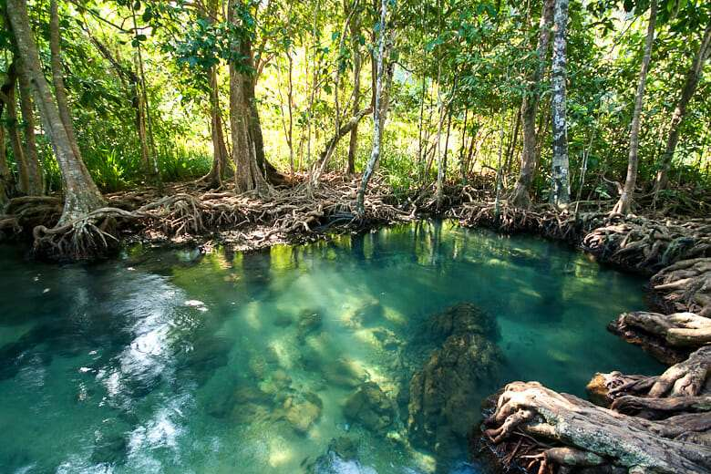 Национальный парк Khao Phanombencha
