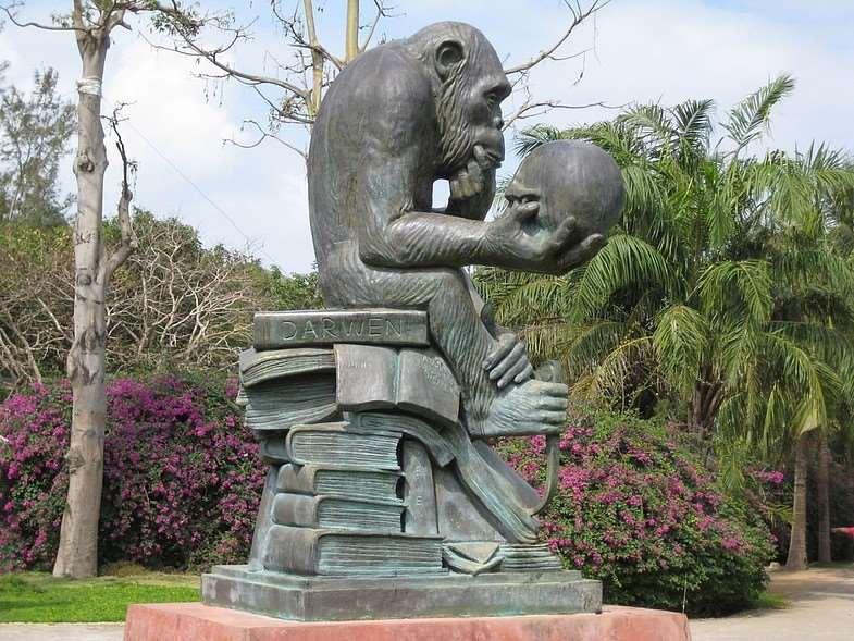 статуя на Острове обезьян