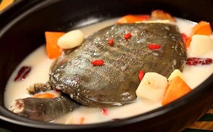 Один из распространенных китайских десертов – сладкий суп из черепахи.