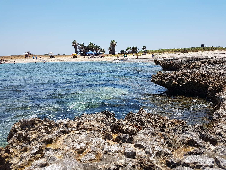 Острова. Девять островов окружают полуостров на котором расположен район Триполи – Мина. Самым известным является «Остров Кролика» (или «Остров Пальм»). В 1992 году Ливанское государство и ЮНЕСКО объявили его и другие острова охраняемым природным заповедником. За сохранением биотопов следит комитет по охране окружающей среды Ливана и военные.