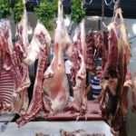 старый рынокторговля мясомему уже 700 лет и все время работает