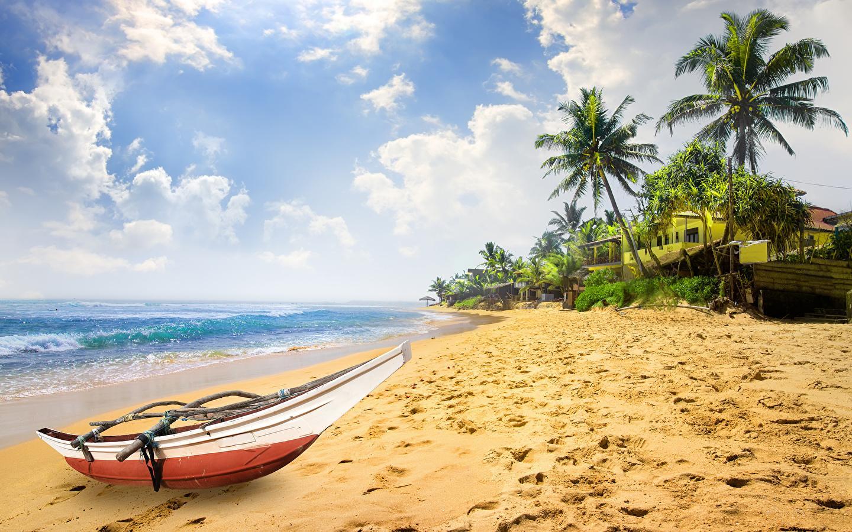 Большую часть года Шри-Ланка считается дождливым курортом, однако март входит в исключение из правил. На весь месяц приходится не более 6 дождливых дней, причем осадки выпадают кратковременные, чаще ночные, и не мешают отдыхающим.