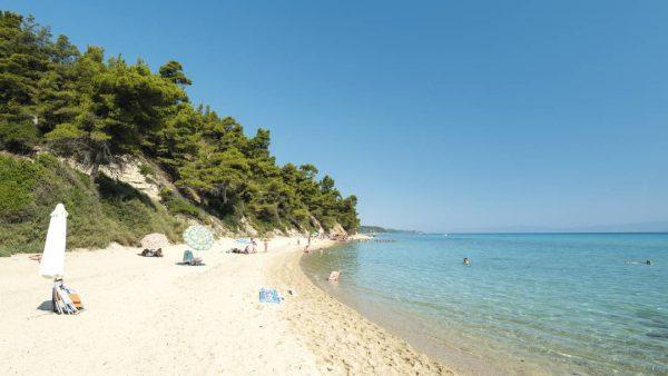 Пляжи Криопиги отличаются белым песком, спокойным морем и чистым воздухом с ароматами сосновых смол, доносящимися из леса, местами доходящего до самой кромки воды.