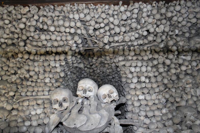 Экскурсию не для слабонервных совершают в городе Кутна-Гора (80 км от Праги). Внутренняя отделка костела Всех Святых полностью изготовлена из человеческих костей и черепов.