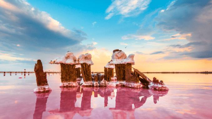 Кояшское Розовое озеро Крыма