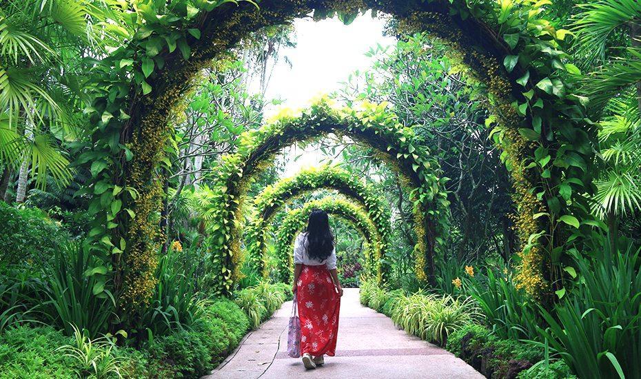 Это самый большой ботанический сад в Азии. Очередной рекорд Сингапура, включенный в список ЮНЕСКО