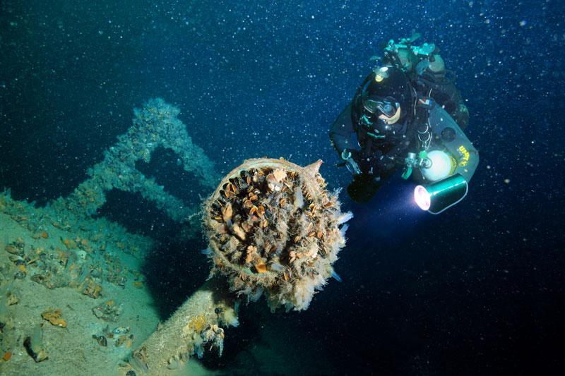 интересная возможность для поклонников дайвинга – исследование затонувшего корабля «Цесаревич Алексей»