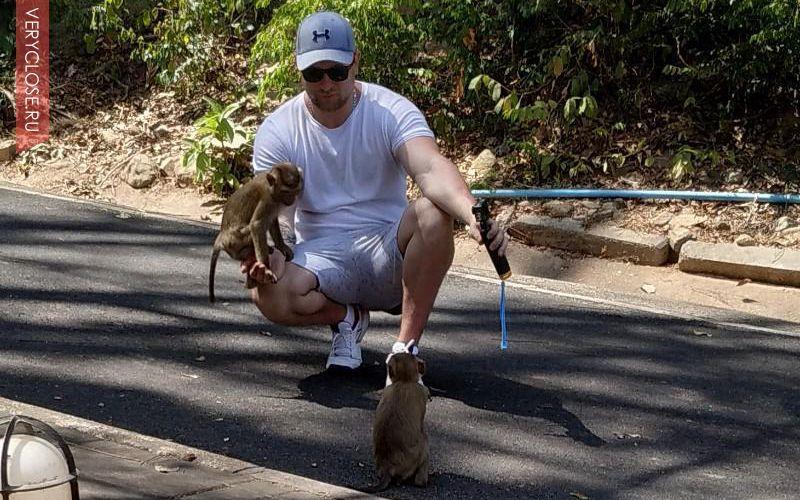 Запомните! Это в первую очередь дикие животные и только потом милые обезьяны, они опасны, и могут укусить вас, посмотрите ролики в интернете, поэтому не пытаемся их гладить, хватать за лапы, брать на руки и пытаться отобрать у них еду, может плачевно закончится