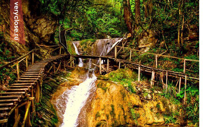 Колхиды-это вид лесов, который существовал во времена Ледникового периода