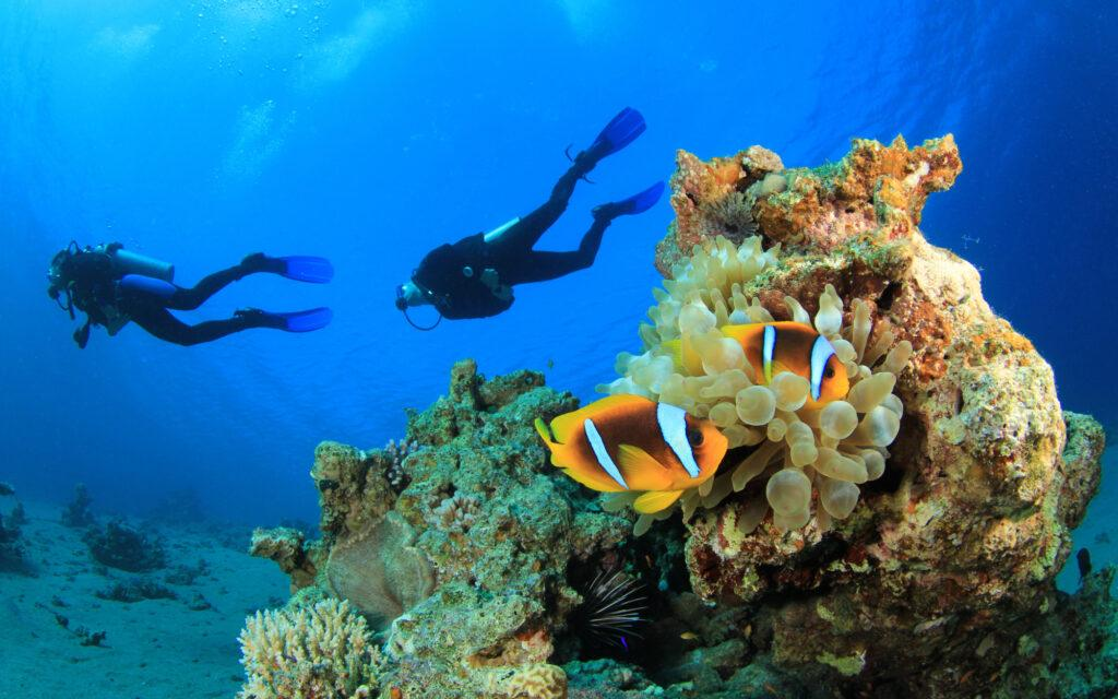 Подводное плавание в Индийском океане является популярным времяпрепровождением на африканском острове